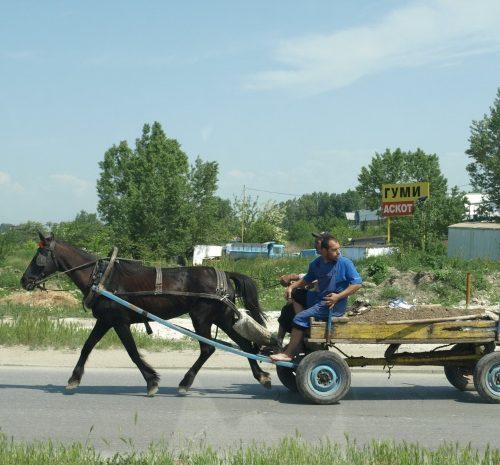 Задържаха каруци с дърва по пътя Арчар – Мали Дреновец