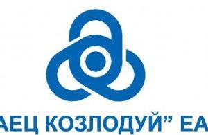 """Удължават лиценза на VІ блок на """"АЕЦ Козлодуй"""" ЕАД"""