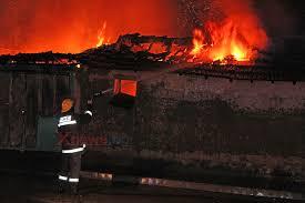 Пожар край Видинско