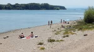 Кметът на Видин забрани къпането на територията на река Дунав