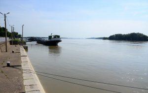 """Кметът на Видин отмени първи етап """" повишено внимание"""" заради високите води на Дунав"""
