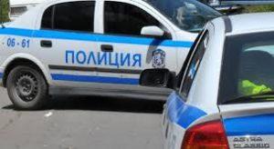 Змия пропълзя в полицейска патрулка в Дупница