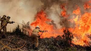 Пожар в Белоградчишко