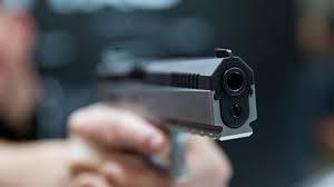 61-годишен мъж нападна с пистолет и брадва частен имот в Белоградчик
