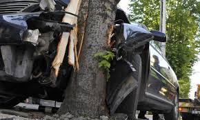 Кола се заби в дърво: Жена е загинала на място, а дете е в реанимация