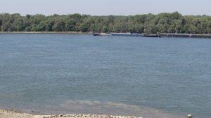 Отлагат авиационното пръскане срещу комари по поречието на Дунав
