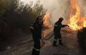Огнеборци гасиха пожари във Видин и в две села