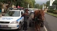 Трима отмъкнали каруца, кон и кобила от две видински села