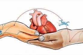 МЗ публикува за обществено обсъждане Национална програма за насърчаване на донорството и подпомагане на трансплантацията в Република България (2019 – 2023 г.)