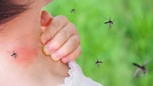 Два нови случая на западнонилска треска у нас