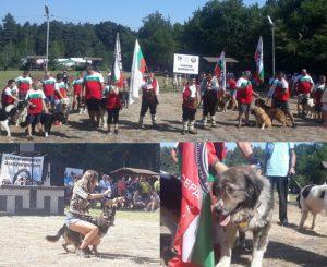 """Национален събор """"Да покажем българското"""" във Вършец"""