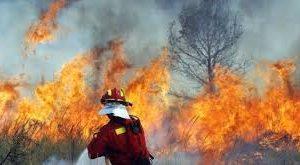 Екипи потушили 9 пожара през изминалото денонощие във видинско