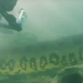 Водолази се натъкнаха на 7 метрова анаконда край водите на Бразилия
