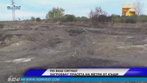 Изкопът за загробване на свине в Ново село бил законен, твърдят институциите (Новините на Видин Вест)