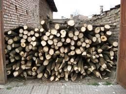 Иззеха 17 кубика контрабандни дърва в Бела