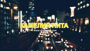 """""""Kамелия пита"""": Справя ли се държавата с корупцията? (Утро с Видин Вест)"""