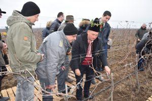На Трифон Зарезан осветиха 170 декара бъдещи лозови насаждения в района между селата Гомотарци и Кошава