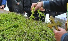 Засилени мерки за Цветница в Община Берковица