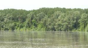 Днес в Дунавската равнина ще духа умерен вятър от запад-северозапад, утре вятърът ще се усили