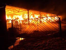 5000 бали унищожи пожар в Дунавци
