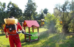 Детските площадки във Видин се третират срещу бълхи
