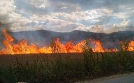 Институциите във Видин апелират за повишено внимание и отговорност с цел намаляването на риска от пожари