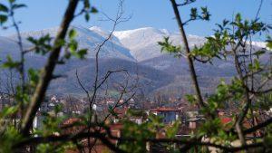 Община Берковица отмени традиционния празник на Балкана