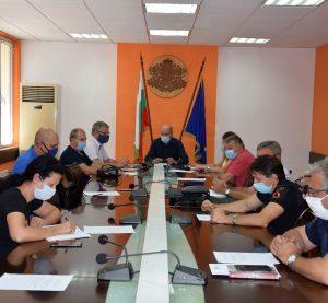 Само 3 случая на АЧС при диви свине в област Видин от началото на годината