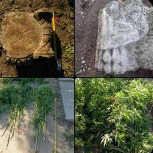 14 души арестувани при спецакцията в трите Видински села