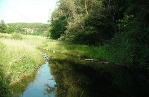 Труп изплува от реката край Арчар