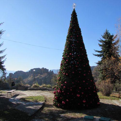 Монтирана е новата Коледна елха в Белоградчик, скоро ще грейне(Снимки)