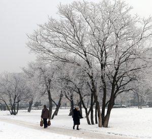 Жълт код за студено време с отрицателни дневни температури за Видин и още 16 области за утре