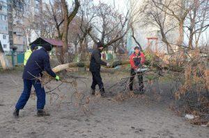 Работници от ОП по чистота премахнаха опасни дървета в двора на детска градина(Снимки)