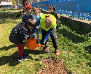 Видински деца засадиха фиданки в Седмицата на гората (Снимки)